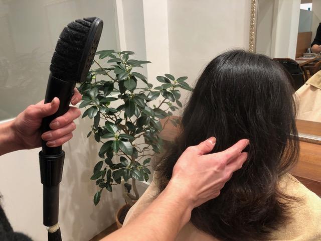 パサつく髪にうるおいを与えるメニュー